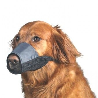 Dog Muzzle Knitting Pattern : 296 best images about Dog - Collars, Harnesses & Leashes on Pinterest V...