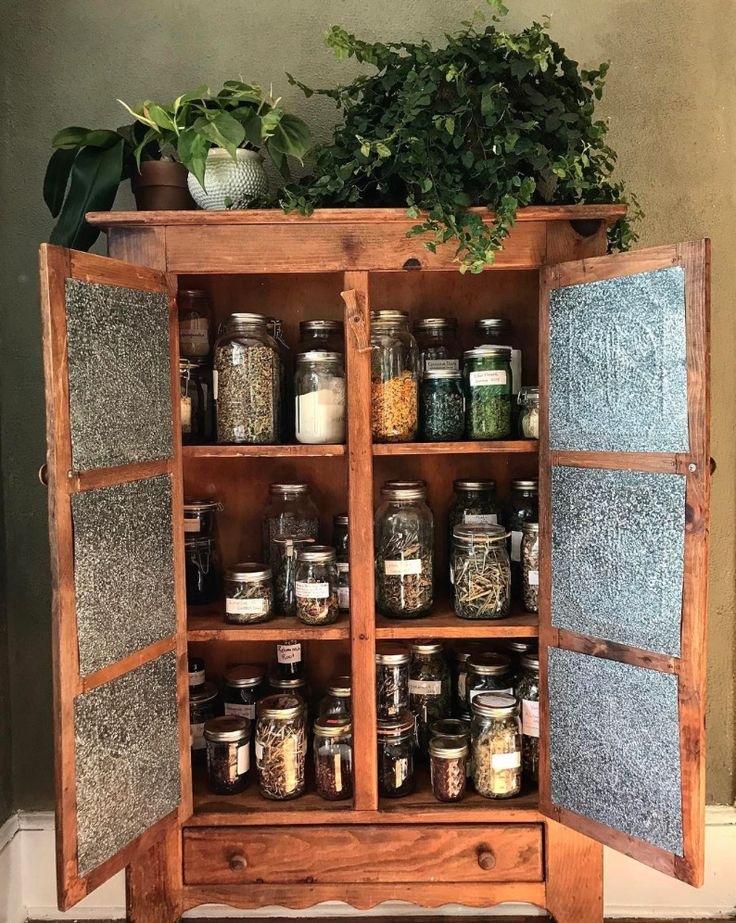 Build your own home apothecary with the Chestnut School's Online Medicine Making Course!