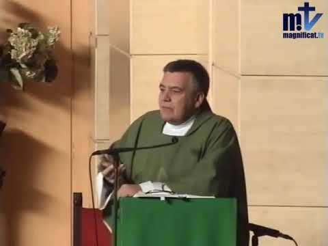 MI RINCON ESPIRITUAL: Evangelio y Homilía de hoy martes 14 de noviembre ...