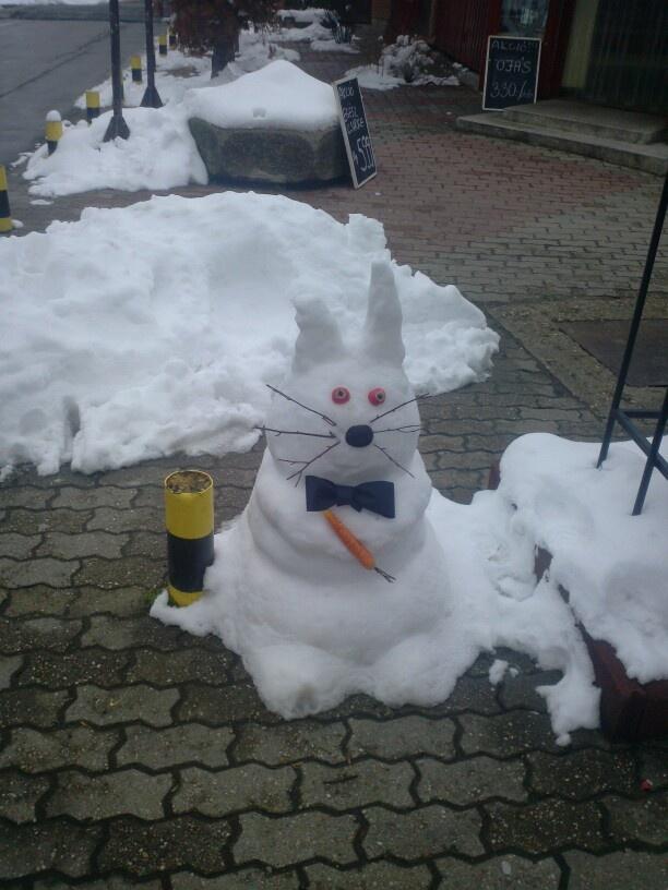 snowrubbit :D