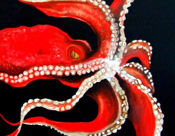 Red Octopus Drift Very large Original Acylic Painting By C Rainwater . 36x48. Canvas. Stunning in person his eye will follow you. This is one of my favorite peices ive done.