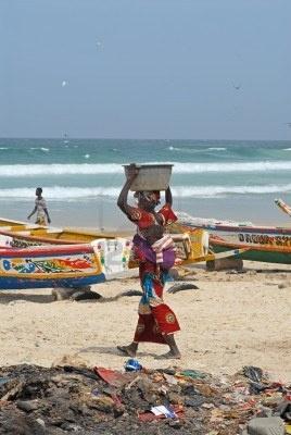 Senegal -Nieuwe bestemming van Arkefly: Senegal. Schitterend land met meer dan alleen winterzonstranden. Op relatief klein oppervlak (5x Nederland) wisselen de mooiste landschappen elkaar af: woestijn, rivierdelta's, steppes, mangroves, bossavannes, rijstvelden en tropisch regenwoud.  Ticket Dakar 550 euro retour.