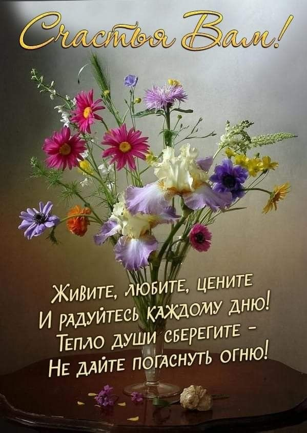 Радуйся жизни открытка