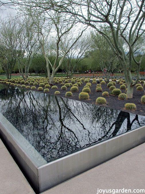 66 Best Sunnylands Center Gardens Images On Pinterest Landscape Architecture Design Palm