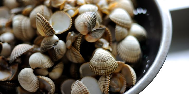 How to prepare cockles....alive alive oh!