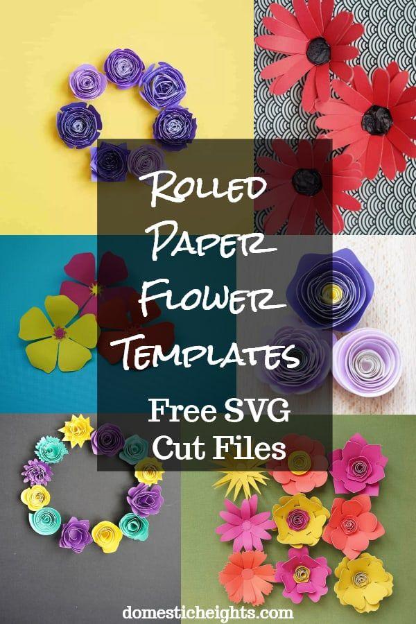 Rolled Paper Flowers Rolled Paper Flowers Paper Flowers Paper