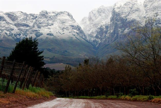Winter in the Helderberg - Hottentots-Holland mountains.