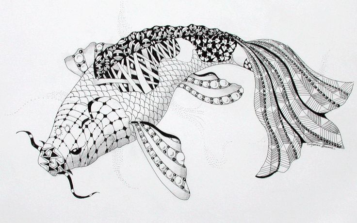 114 best images about zentangle fish on pinterest for Koi zen facebook