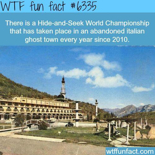 #Italy #Hide & Seek #World Championship