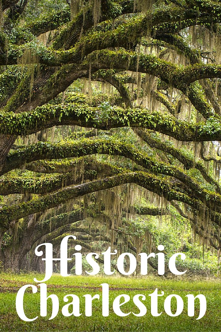 Guide to Visiting Historic Charleston with Kids