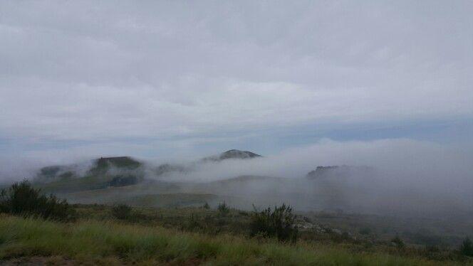 Misty♡