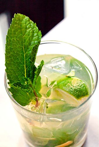 ginger mojito.El Mojito, Tory Blog, M M M M M M Gingers Mojito, Tory Burch, Tory Entertainment, Green Ish, Tory Gingers, Mint Julep, Green Wedding