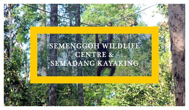 Find out how best to spend a day getting in touch with nature in Kuching, Sarawak in Malaysian Borneo. Eco-tourism at its best!