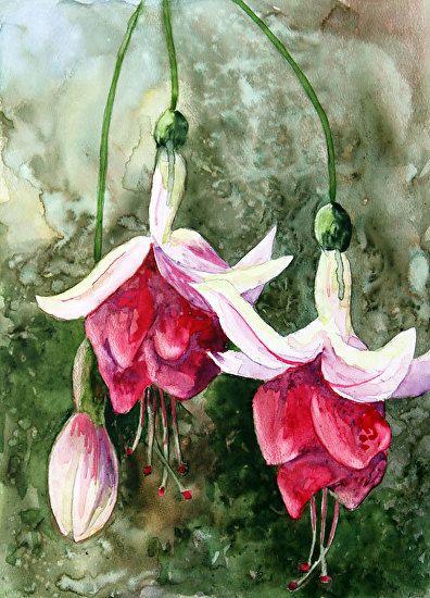 "Fuchsias on TerraSkin by Nancy Goldman Watercolor ~ 6"" x 4"""