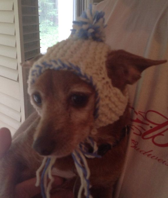 Ready to Ship, Knit hat for your dog, dog hat with bobble, knit dog hat, knit kitty hat