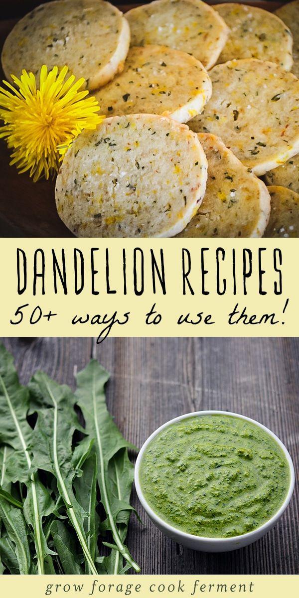 50 Dandelion Recipes Drinks Sweets Soap Remedies More Dandelion Recipes Herbal Recipes Foraging Recipes