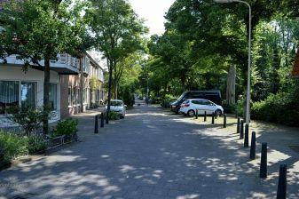 De Schimmelweg aan de rand van Spoorwijk. Dit is altijd een groene straat geweest.