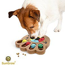 Unique Shuffle Puzzle Smart Toy for Dogs by SunGrow : Improve concentration : Reduce hyperactivity : Fun Interactive IQ game to hide treats in : Encourage Mental & Physical skills of pets