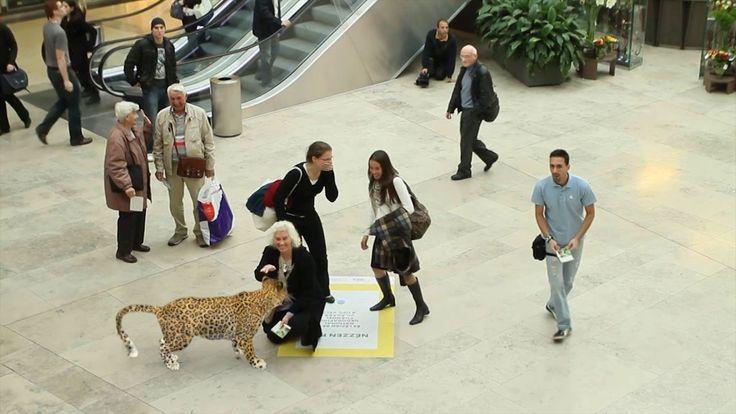 Alucina con esta acción de National Geographic que sorprendió a los transeúntes de un centro comercial