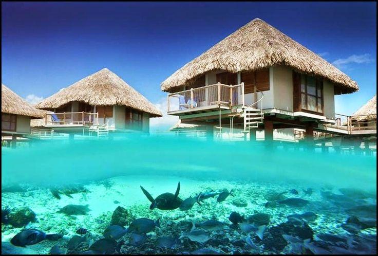 Imagenes+De+La+Isla+Bora+Bora