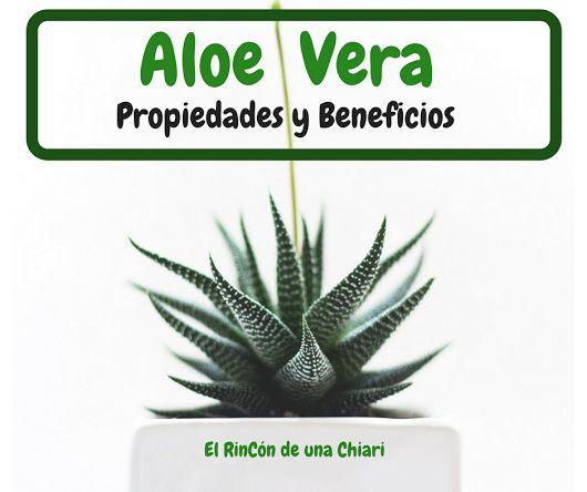 Aloe Vera | Propiedades y Beneficios | Descubre cómo usarlo | El Rincón de una Chiari