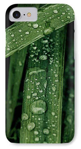 Grass IPhone 7 Case featuring the photograph Green Grass With Waterdrops by Oksana Ariskina on @pixels and @fineartamerica  Buy print and other product with my fine art photography online: www.oksana-ariskina.pixels.com   #OksanaAriskina  #FineArtPhotography #HomeDecor #FineArtPrint #PrintsForSale #Grass #Plant #Green #Spring #Summer #Drop #Tears #Teardrops #macro #Closeup