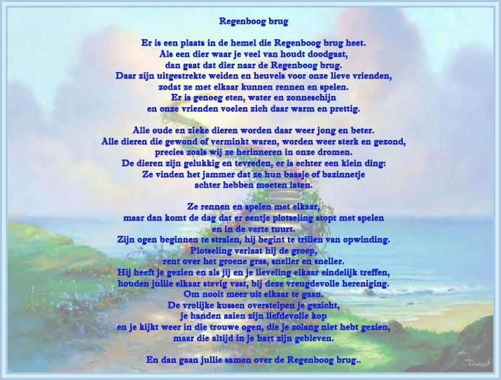 This is the rainbow bridge poem in Dutch