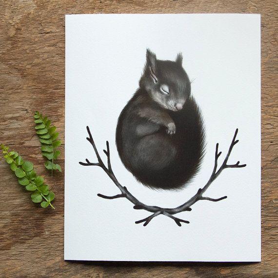 Sleeping Baby Squirrel Print 8x10