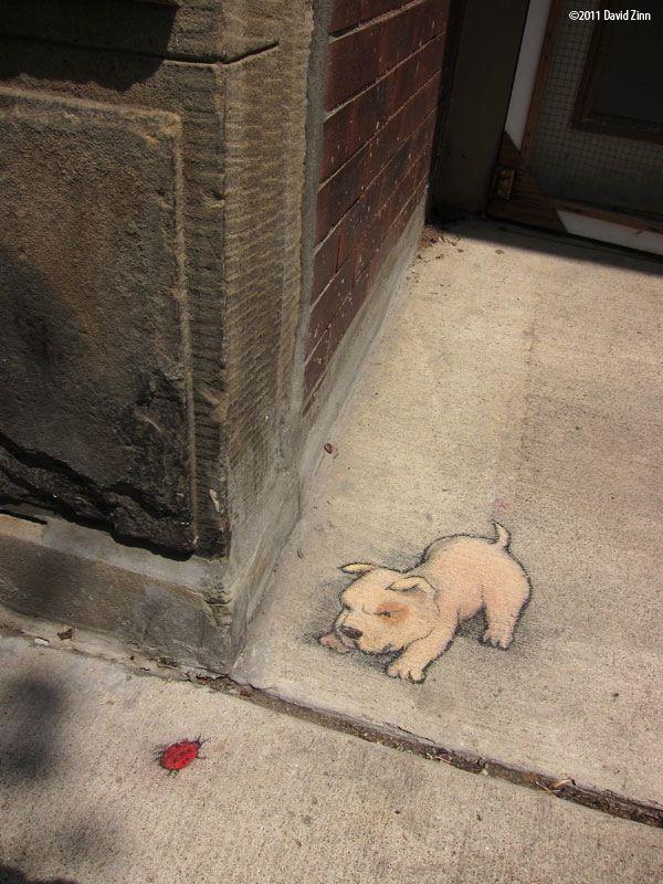 Best David Zinn Chalk Art Images On Pinterest David Zinn - David zinns 3d chalk art adorably creative