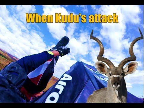 Kudu VS Honda l Vlog 2 - YouTube