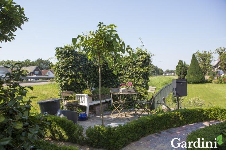 Kleine heggen van buxus vormen de randen van de borders in deze klassieke tuin. Vele oude elementen geven charme aan het geheel, bijvoorbeeld het sierlijke paadje en de klassieke bistroset.