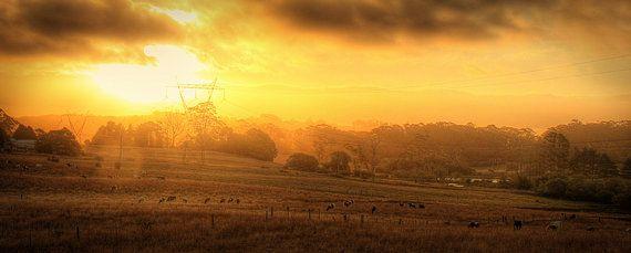 Robertson NSW Photography Print by RichardjJones on Etsy, $450.00