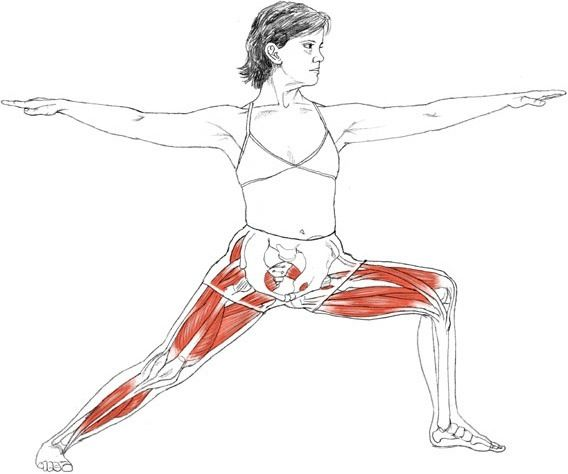 Virabhadrasana II (warrior pose) via Leslie Kaminoff