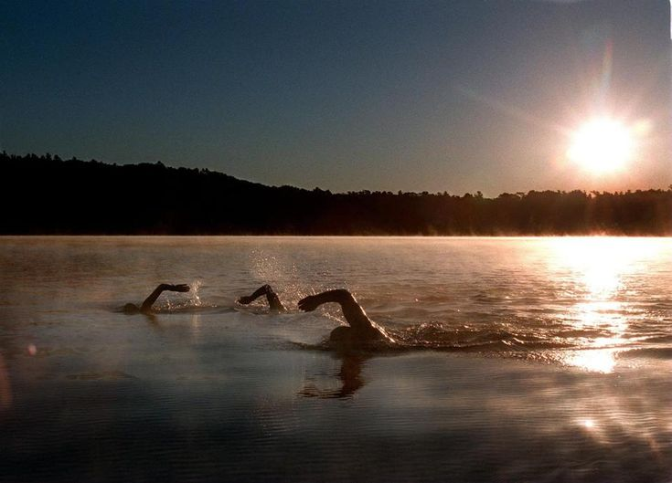 Gary Zasman, Pat Hambrick and Melissa Patterson, all of Weston, swam in Walden Pond.
