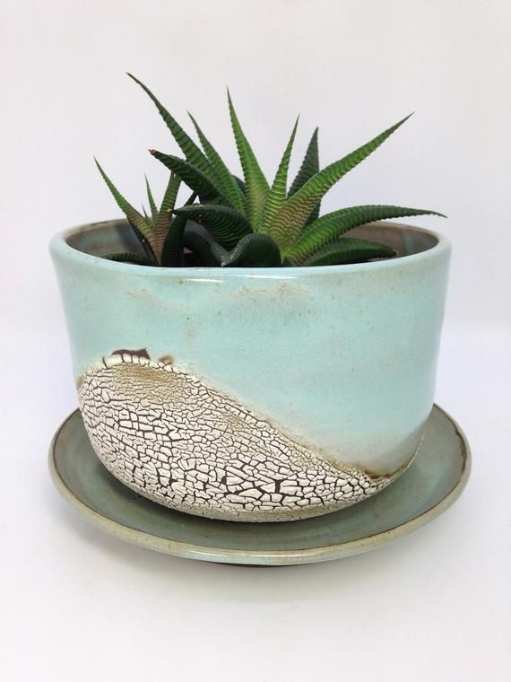 Ceramic Planter Succulent Pot Planter With Saucer Cactus Pot Desk Planter Drainage Planter Clay Flower Clay Flower Pots Ceramic Planters Rustic Planters