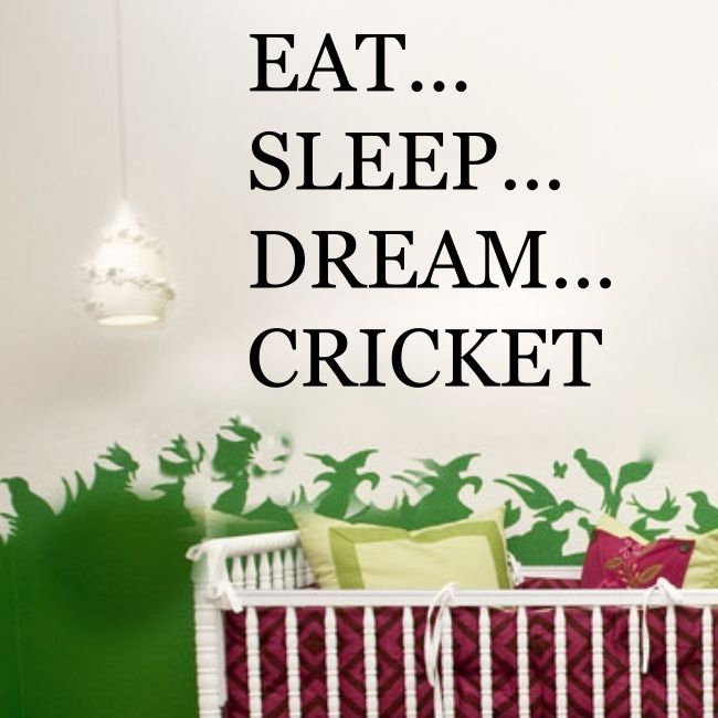 EAT SLEEP DREAM CRICKET sports player bedroom mens boys wall stickers quote | eBay