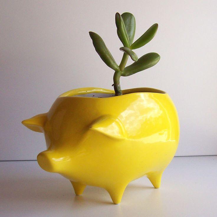 Ceramic Pig Planter Vintage Design in Lemon Yellow.Plants Can, Vintage Designs, Planters Vintage, Piggies Banks, Fruit Fly, Plants Holders, Pigs Planters, Lemon Yellow, Ceramics Pigs