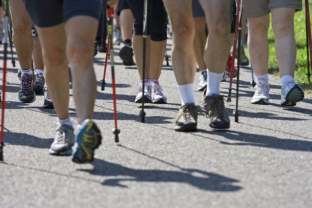 Halten sich fit: Teilnehmerinnen und Teilnehmern des Aqua-Walks Greifensee