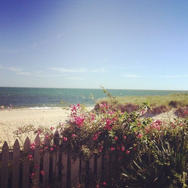 17 Best Images About Cape Cod Fall Activities On Pinterest