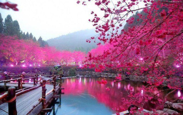 اجمل منظر طبيعي Japan Reisefuhrer Japan Reisen Reisen