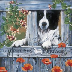 """Border Collie """"Shepherd's Cottage"""" Square Jigsaw Puzzl"""