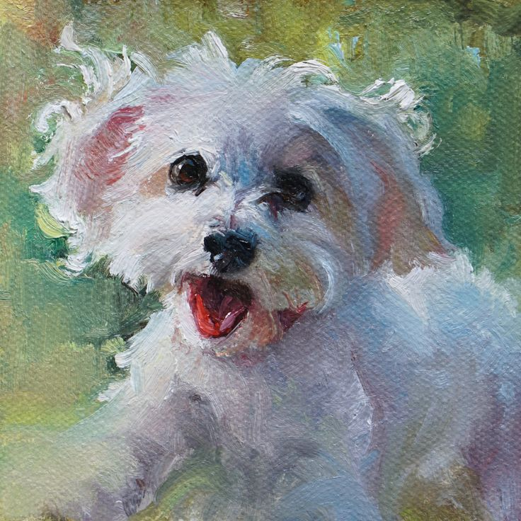 "'Fun Sized' pet portrait of Daisy.  4x4"" oil on canvas by Heather Lenefsky Art."