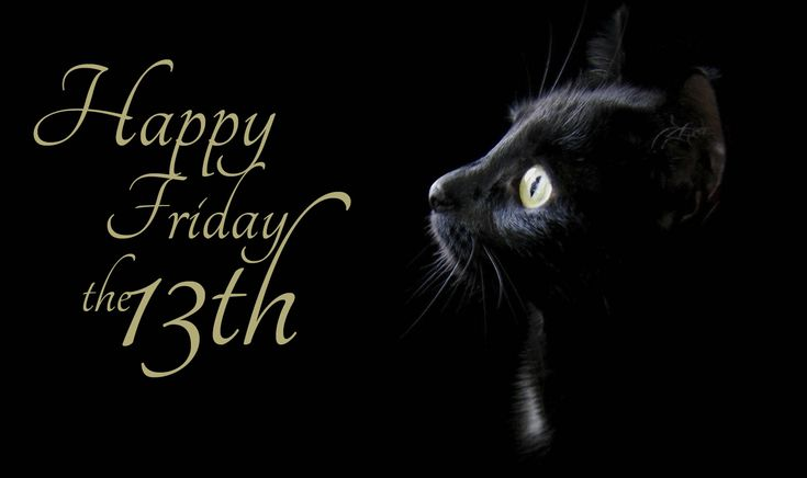 Happy Friday the 13th! So just how superstitious are you? Do you batten down the hatches, because today is Friday the 13th? Or do you believe today is lucky. Or is it just another day to look at cute little cats? I'm curious, just how superstitious are you?