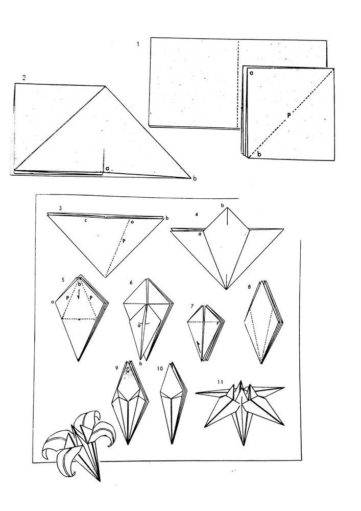 origami giglio istruzioni web