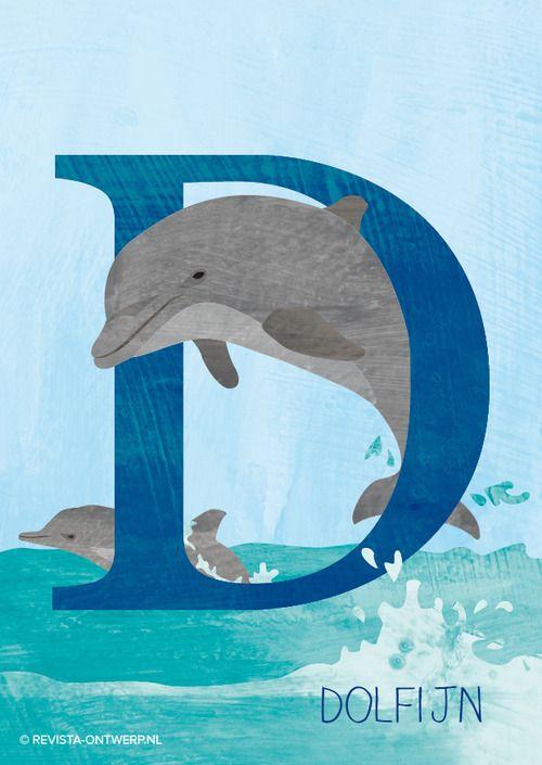 De D is van dolfijn. Met zijn staart maakt hij snelheid in het water en kan hij hoog springen.   Illustratie van het dieren ABC voor kinderen. www.revista-ontwerp.nl