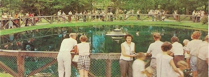 The blue hole of castalia ohio was a tourist attraction for Fish hatchery ohio