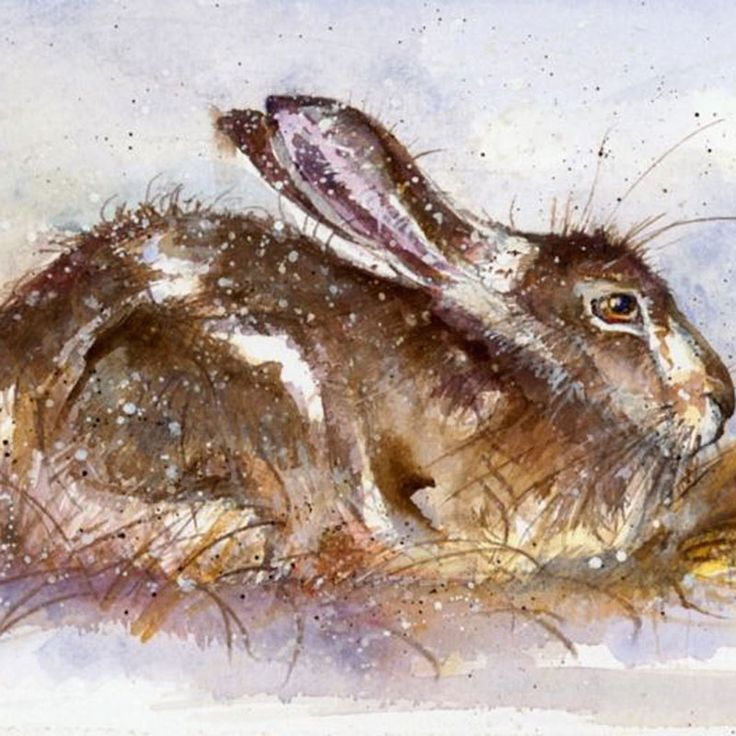 262 best Bunny images on Pinterest