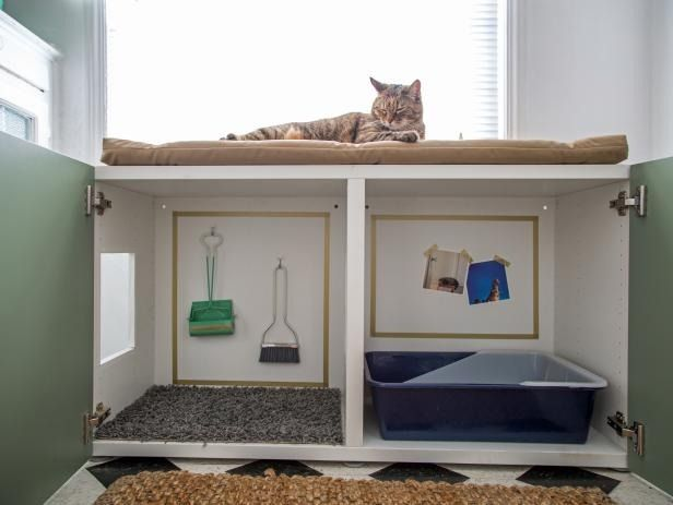 Pet-Friendly Home: Ideas for Pet-Friendly Decorating and Design | HGTV