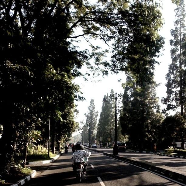 Bandung - Indonesia