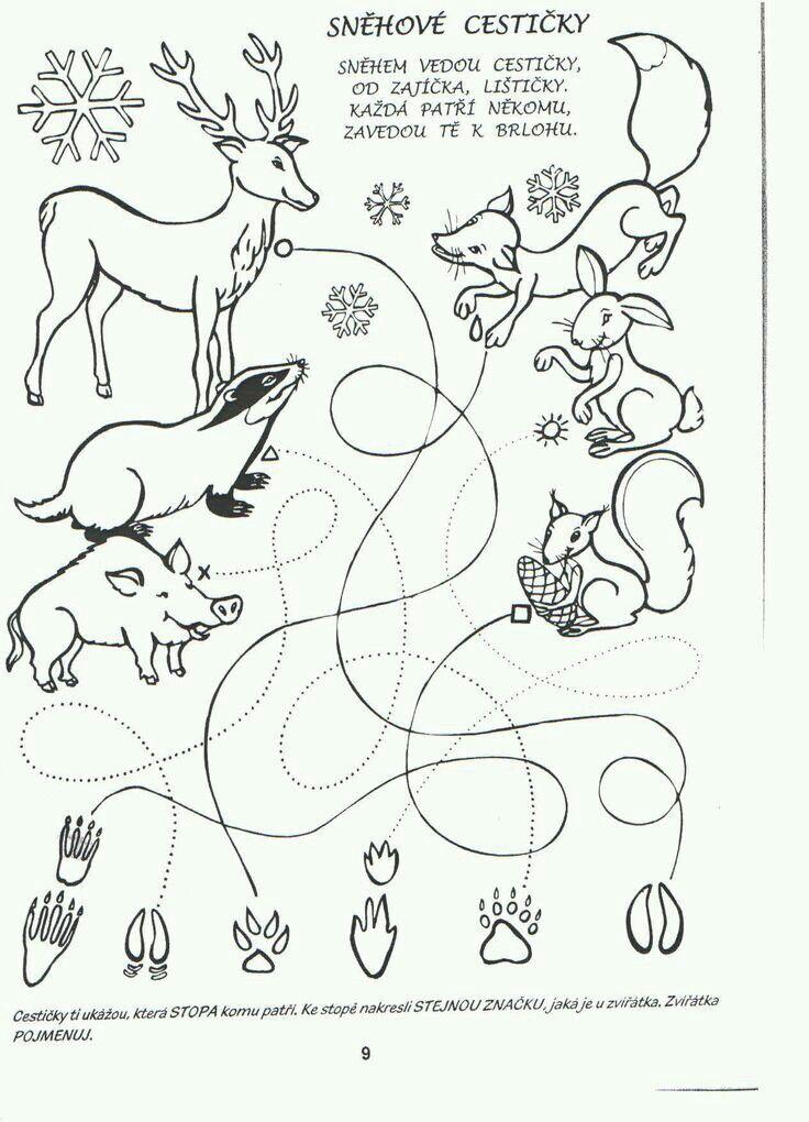 Stopy zvířat - spojovačka